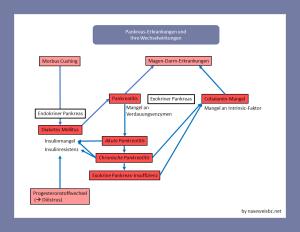 Zusammenhänge zwischen den verschiedenen Pankreas-Erkrankungen Diabtes, Pakreatitis, Cobalamin-Mangel