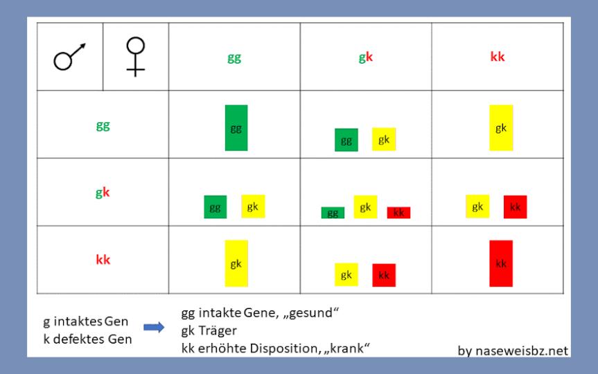 Grafik: Statistische Verteilung eines Gendefektes bei den Welpen durch gesunde (gg), betroffene (kk) oder Träger-Elterntiere (gk)