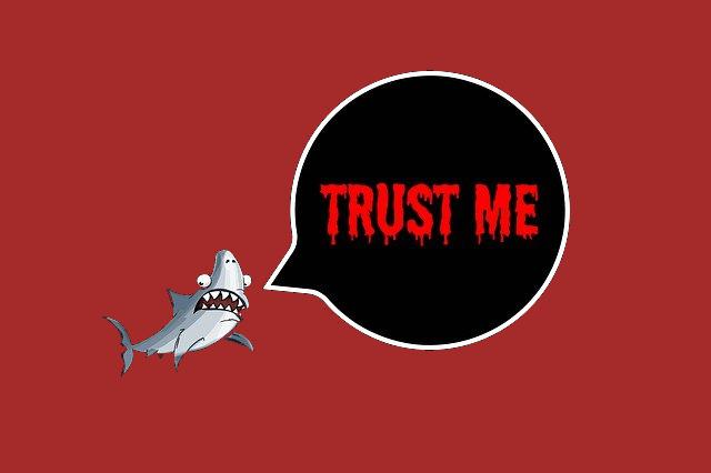 Blutrünstiger Hai: Vertrau mir - ich will nur mein Bestes! (Quelle: pixabay)