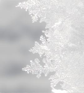 Raueis Detail: Verzweigte Struktur erkennbar
