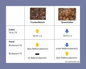 Grafik: Darstellung der unterschiedlichen Hormonwerte: Die Verarbeitung führt zu unterschiedlichen Hormonwerten in belastetem Futter und im Hund