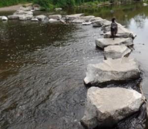 Hund renntüber Steinbrücke